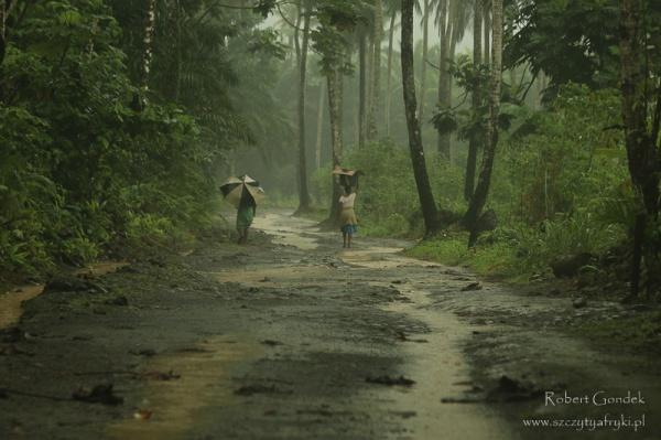 Wyspy Św. Tomasza i Książęca - pora deszczowa