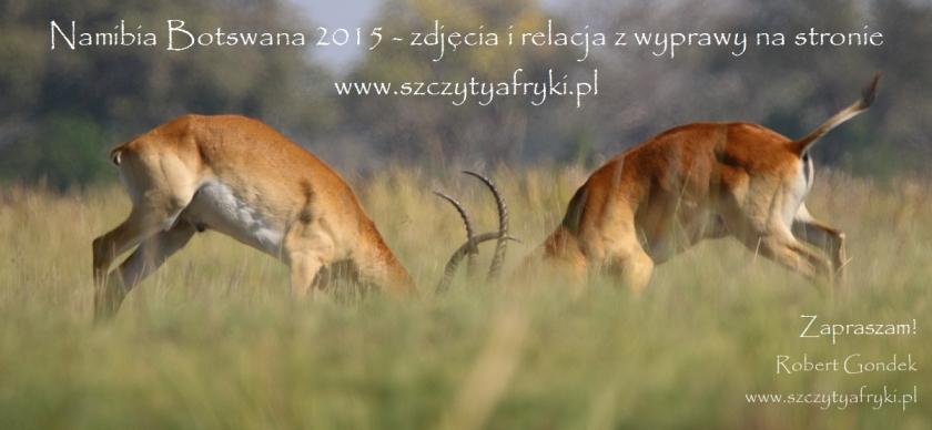 Namibia i Botswana na zdjęciach