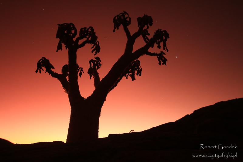 Namibijskie nocne niebo