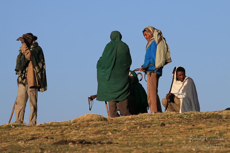 Obsługa trekkingów w Górach Semien