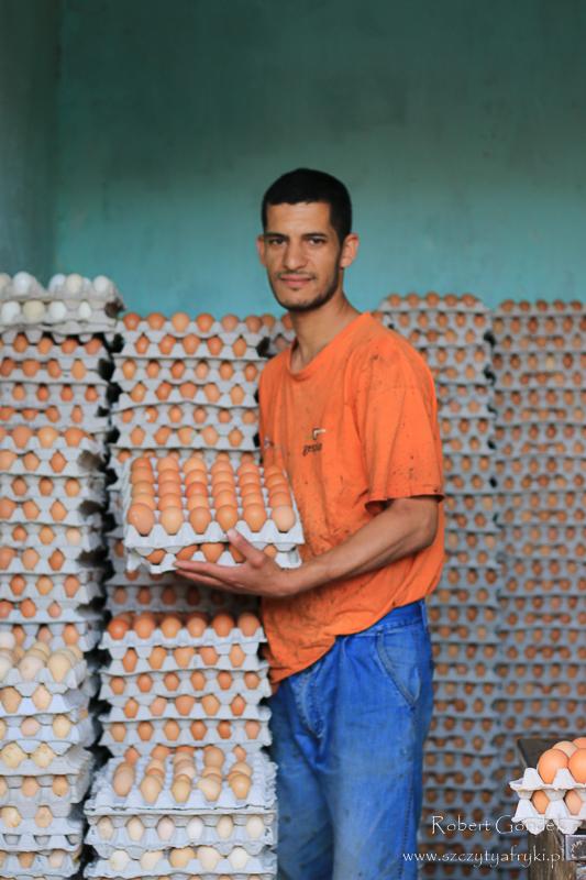 Maroko - Sprzedwca jaj w Marrakeszu