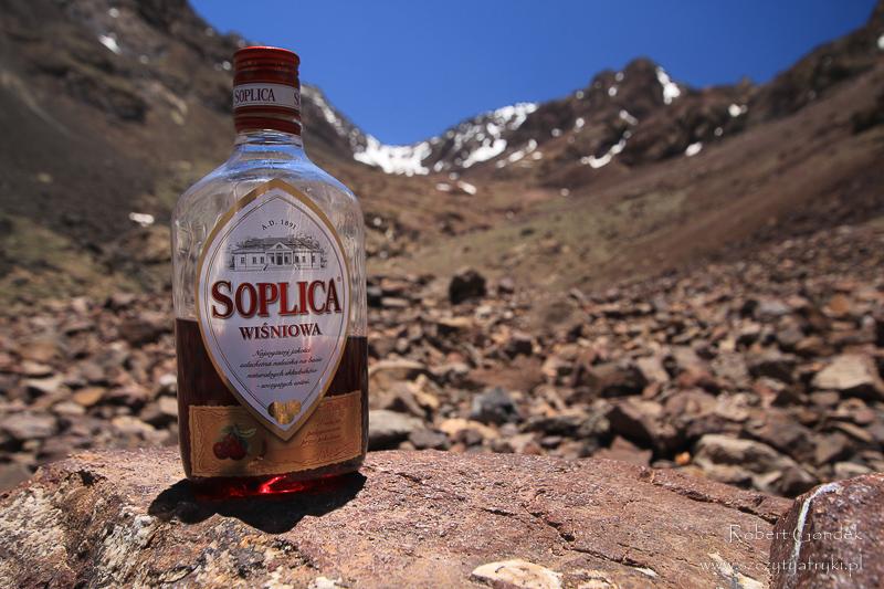 Maroko - Wiśniówka w górach Atlas