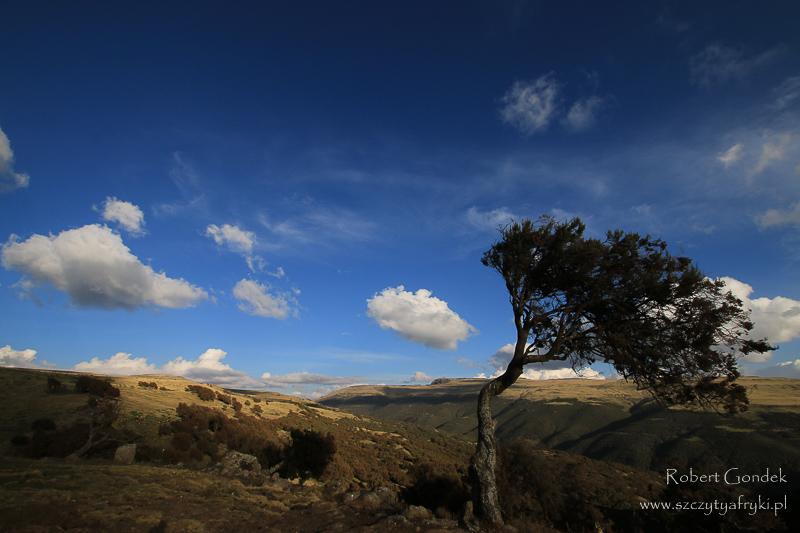 Góry Semien - Krajobraz