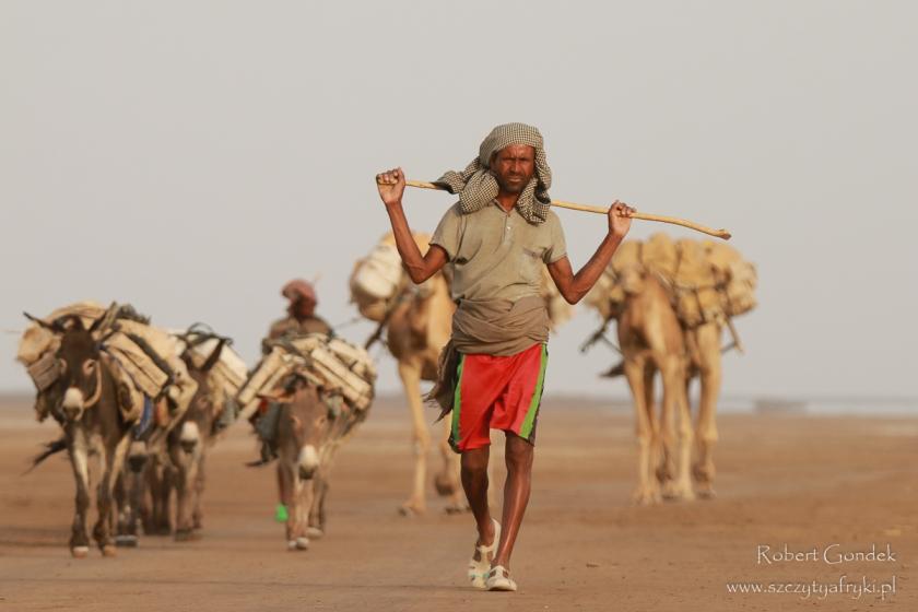 Etiopia - Pustynia Danakilska - Karawana